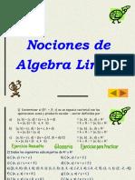 07 Nociones de Algebra Lineal