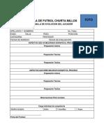 Formatos Profes 2014