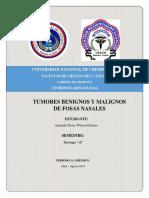 ANDRADE FLORES WILSON PATRICIO- TUMORES BENIGNOS Y MALIGNOS DE FOSAS NASALES Y SENOS PARANASALES.docx