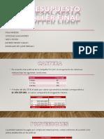 Presentación presupuesto cuadrado.pptx