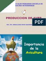 Produccion de Aves