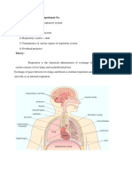 Respiratory System.docx Fy