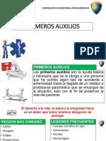 AUDITORIA METODO RISICAR