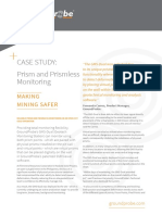 English Prism and Prismless Monitoring