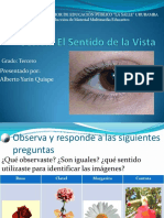sesinsentidodelavista-101002100549-phpapp01