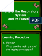 Lesson 2 Parts of the Respiratory System.ppt