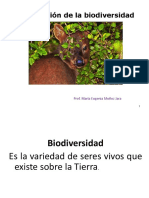 taxonomiaprimerosmedio-190429155502