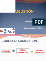 combustin-120410144012-phpapp01.pdf