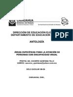 Areas Especificas Dv
