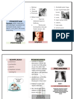 Leaflet Pneumonia Vivi 2
