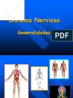 Clase de Sistema Nervioso