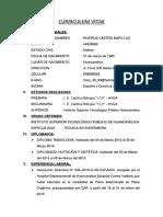 Curriculum Vitae Mariluz