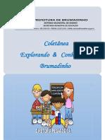 APOSTILA_BRUMADINHO