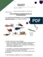 guas invertebrados