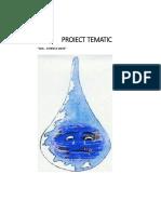 Proiect Tematic Apa