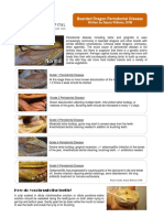 Bearded Dragon Periodontal Disease-Aurora Animal Hospital