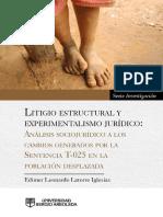 Litigio Estructural y Experimentalismo