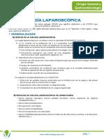 ANEXO_6._LAPAROSCOPIA.pdf