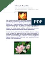 Benefícios e Mistérios Da Flor de Lótus