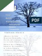 poesiayfigurasliterarias-PPT