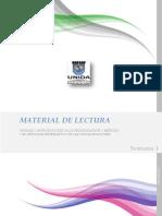 Globalización. Diseño Organizacional_Material de Lectura 1