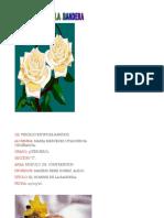 EL HOMBRE  DE  LA  BANDERA.docx