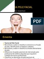 Teoria Da Pele Facial
