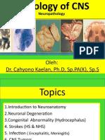 NEUROPATOLOGI KULIAH.pptx