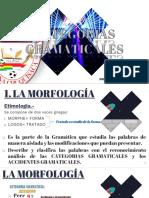 Morfologia y Categorias Gramaticales