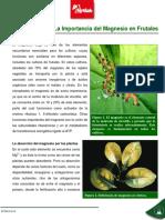 La Importancia Del Magnesio en Frutales