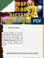 Necropsia Psicológica o Dictamen (1)