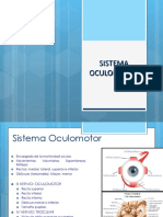 Sistema Oculomotor