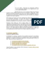 Estrategia_Competitiva_-_Michael_Porter.doc