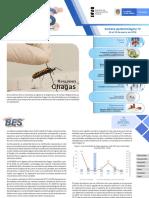 2019 Boletín Epidemiológico Semana 13