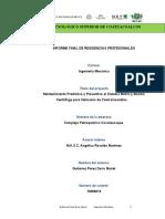 Doris Mariel Gutierrez Perez Mantenimiento Predictivo y Preventivo a Sistema Motriz y Bomb Centriufga