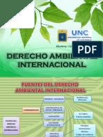 derechoambientalinternacional1-140930104843-phpapp01