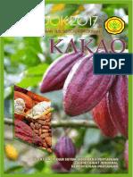 Outlook Kakao