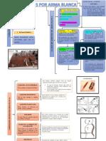 Mapas Conceptuales Medicina Legal