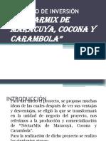 PROYECTO DE INVERSIÓN Nectar MIX.ppt