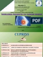 Ingrijirea Pacientei Cu Cancer Mamar