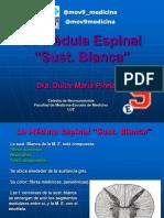 (2) LA MEDULA SUSTANCIA BLANCA TRACTOS ASCENDENTES pdf