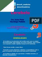Cerebelo pdf