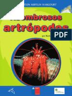 Asombrosos artrópodos
