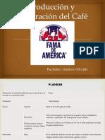 Producción y Elaboración Del Café