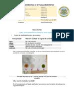 Informe Practica de Actividad Enzimatica 5 Js