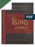 Biblia King James - Novo Testamento Com Salmos e Proverbios