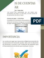Procesos de Cuentas Por Pagar.pptx Luis Guaño