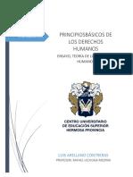 PRINCIPIOS BÁSICOS DE LOS DERECHOS HUMANOS