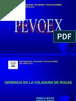 GM-PEVOEX