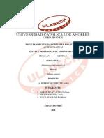Balance-General-Tabajo-monográfico-Administración-Financiera-II.docx